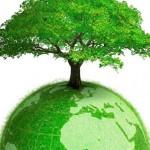 Экологические Проекты