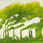 Реализация экологического проекта