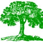 ОВОС — Оценка воздействия на окружающую среду