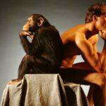 Ученые поведали, чем мозг человека отличается отмозга шимпанзе
