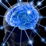 Ночной прием пищи небезопасен для мозга