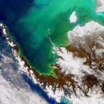 Океаны стремительно заселяются таинственными формами жизни— Ученые