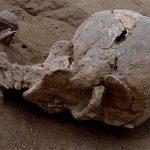 Свидетельства самой древней войны найдены вКении