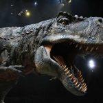Ученые обнаружили останки предка тираннозавра впустыне Узбекистана