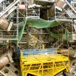 Хорек отключил электричество в огромном адронном коллайдере