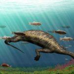 ВКитайской республике отыскали останки неповторимого травоядного морского динозавра