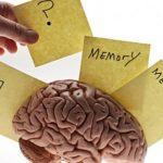 Ученые отыскали способ стереть неприятные воспоминания