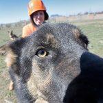Люди одомашнивали собак два раза — Ученые